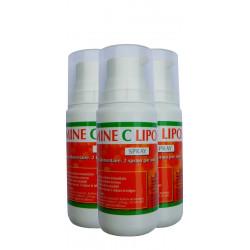 Vitamine C Liposomale en spray x3