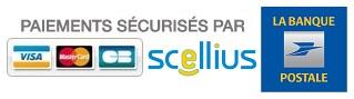 paiement_securise_scelluis